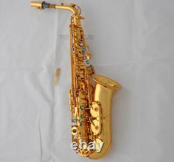 25% SALE! Professional 54 Reference Alto Saxophone Gold Sax High F# With Case