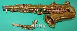 ALTO SAXOPHONE Eb+Fa# GOLD LAQUERED NEW ORLEANS FREE DVD REEDS PACKET 10 PCS
