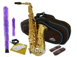 Alto Saxophone Eb Gold Lacquer with Fabulous Case & Accessories Kit