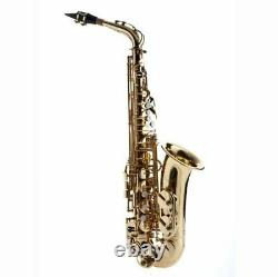 Hawk Student Gold Lacquered Alto Saxophone with Case, Mouthpiece and Reed