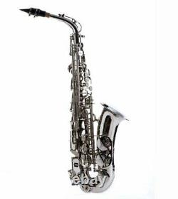 Hawk Student Nickel Plated Alto Saxophone with Case, Mouthpiece and Reed