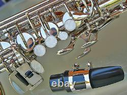 Nickel-Plated Alto Sax Brand New STERLING Eb Saxophone With Case