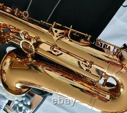 Professional Gold Alto Saxophone Abalone Key By WEIBSTER Musical Sax Double bars