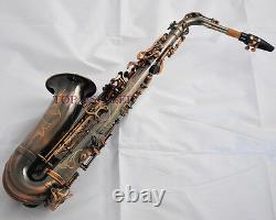 Professional New TaiShan Alto Saxophone Red Antique Eb Sax High F# With case