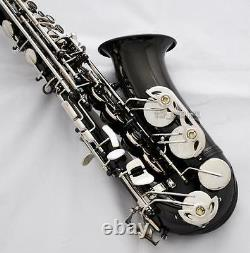 Professional Rolled Note Hole Alto Saxophone Black nickel Silver Sax New Case